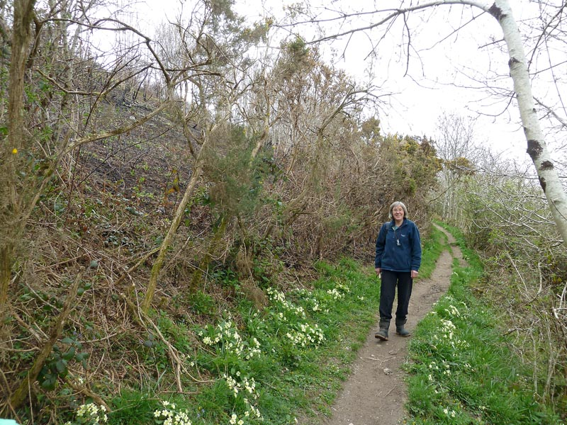 Joan Farmer on the path through Golant Downs, looking north. Photo by Ian Bennallick.