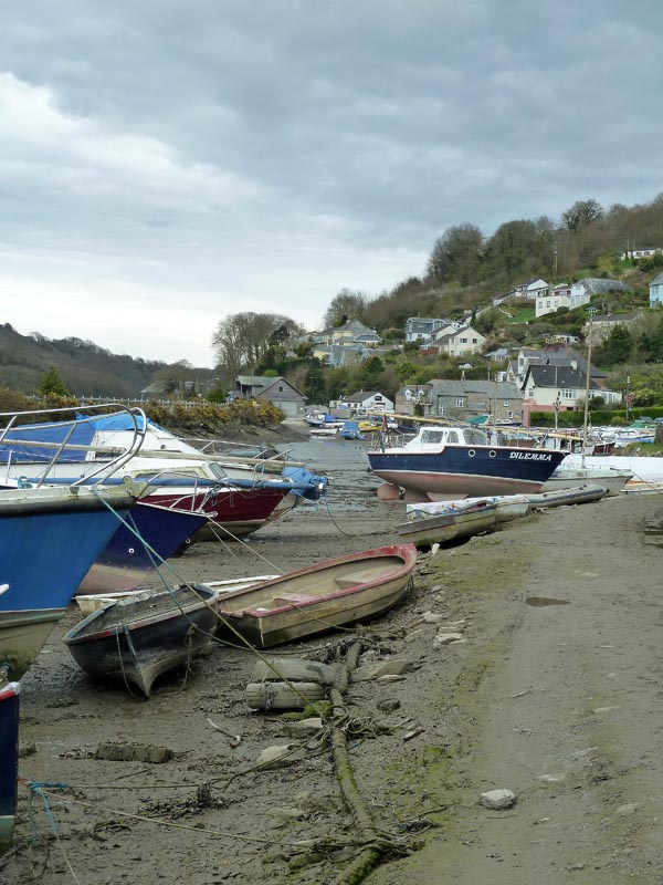 Golant, on the Fowey River. Photo I J Bennallick.