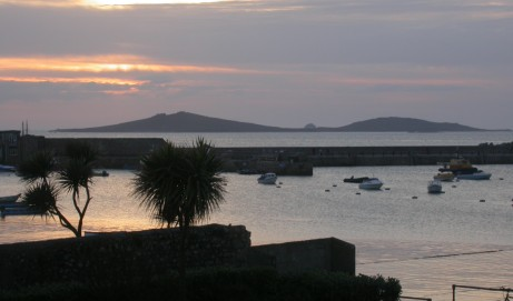 New Flora of the Isles of Scilly – pre-publication offer ends 31st March 2017