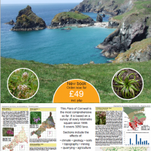 new FLORA OF CORNWALL now available!